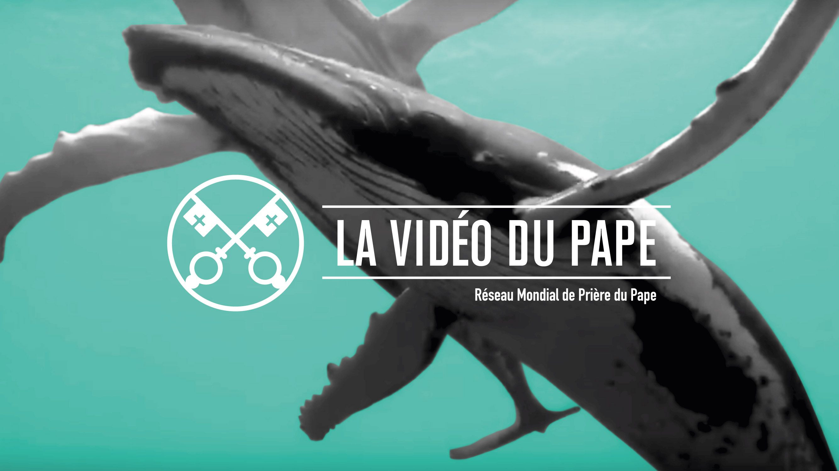 Official-Image-TPV-9-2019-5-FR-La-protection-des-oceans
