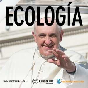 Post The Pope Video Ecology - Spanish