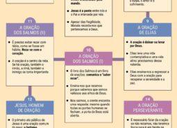 Infografia - Por uma vida